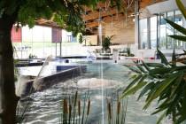 Piscines loisirs sports girus for Piscine aquatis fougeres